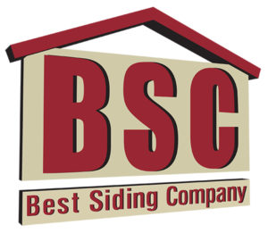 BSC Logo small